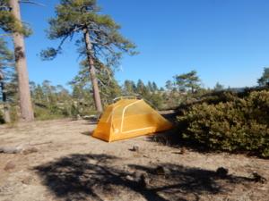 オールド・ビッグ・オーク・フラットロードのキャンプサイト