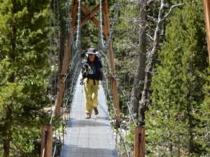 ジョンミューアトレイル ウッドクリークの吊り橋