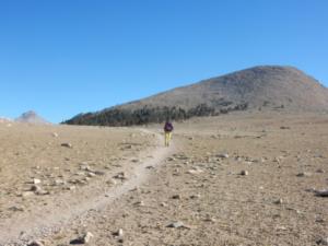 ジョンミューアトレイルの砂漠のような風景